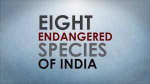 eight endangered species of