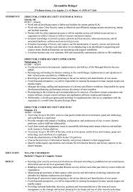Director Of Security Resume Examples Director Cyber Security Resume Samples Velvet Jobs 17