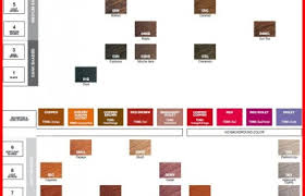 Paul Mitchell Hair Color Chart Download 23 Redken Shades Eq