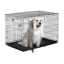 Midwest Icrate Size Breed Chart Midwest Icrate Dbl Door Folding Dog Crate 48x30x33 Be