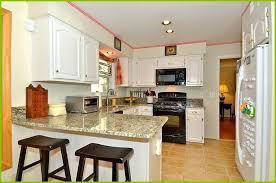 kitchens with white appliances kitchen remodel with white appliances home design ideas with inside size x
