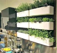 another example of using a wall storage system as an indoor herb garden planter from ideas indoor herb garden