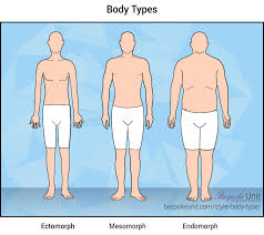 The Ultimate Guide To Male Body Types Understand Your