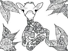 Beautiful Printable Giraffe Coloring Pages And Giraffes Coloring