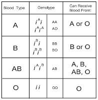 Husaini Blood Bank Blood Types
