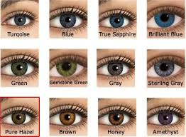 Freshlook Lenses Colors Chart Unique Freshlook Colorblends Color Chart Michaelkorsph Me