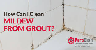 how can i clean mildew from grout