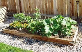 vegetable gardening in colorado