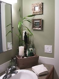 Spa-like feel in the guest bathroom. The fresh green color makes the narrow