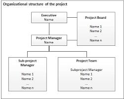 Project Management Checklist Project Organization It