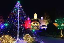 holiday lights at cape fear botanical garden