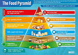 The Pyramid Food Chart Food Pyramid Science Posters Gloss Paper Measuring 850mm X 594mm A1 Science Charts For The Classroom Education Charts By Daydream Education
