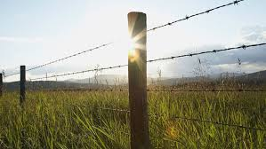 Barbed Wire Fencing Security Fencing Lakeland FL