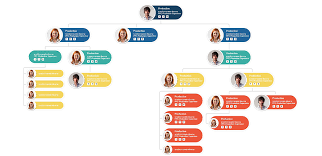 Css Hierarchy Chart Organisation Chart With Css Mafia Web Design
