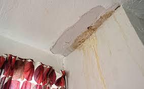 Damp In Ceiling