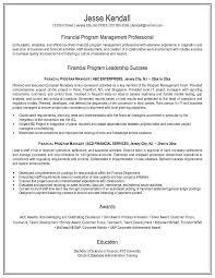 Attractive Finance Program Management Professional Success Manager Resume