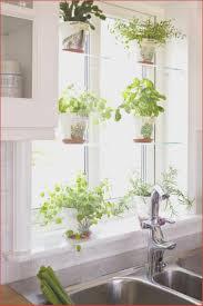 Vorhang Kche Modern Tolle Gardinen Kchenfenster Ideen A23r Design