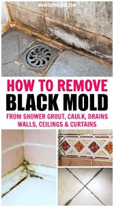 collage of black mold in showers with text overlay that says how to remove black