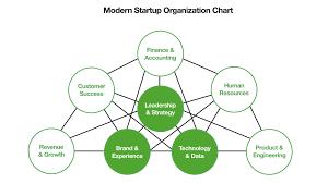 Startup Organization Chart In 2017 Leadership Strategies