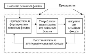 Экономика Основной капитал и проблема его обновления в  Рис 1 Стадии воспроизводства основных фондов