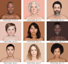African American Complexion Chart This Artist Took 4 000 Portraits To Show The Range Of Human