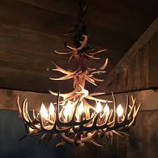 whitetail deer antler chandelier porcupine