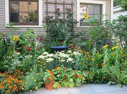 Small Picture Herb Garden Designs Gardening Ideas