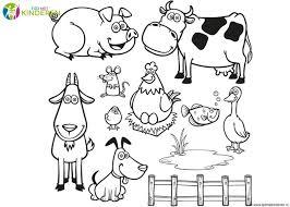 Kleurplaten Dieren 49 Leukste Dieren Kleurplaten Voor Kids Nieuwe