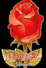 rose video good night wallpaper