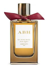 Amber Heath Burberry perfume - a fragrance for women and men 2017