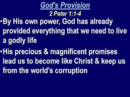 Image result for god has provided everything we need for life and godliness