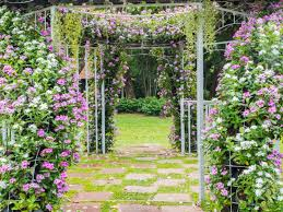 Wedding Photo Background Blooming Flower Arch With Footpath In The Garden For Wedding
