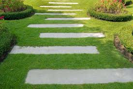 when you take a look at pavers in a landscape sometimes you may see there are plants present in the gaps between them