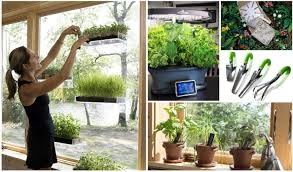 fun gardening gifts