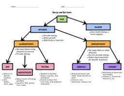 Healthy Eating Food Flow Chart