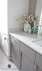 Paint Countertops White Best 25 Paint Bathroom Countertops Ideas On Pinterest Painting
