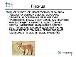 Презентация на тему Дикие животные Окружающий мир класс  8 8 Лисица ХИЩНОЕ ЖИВОТНОЕ