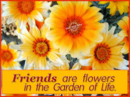 Beautiful Flowers Images With Friendship Quotes Best of Friends Are Flowers In The Garden Of Life