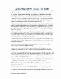 Example Essays Topics Delectable Essay Template Fantastic Examples Argumentative Essay Topics