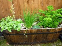 organic herb garden ideas how to start an organic herb garden