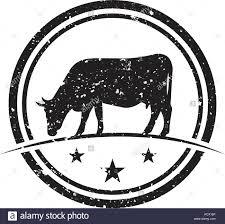 Cow Template Illustration Of Cow Logo Design Template Vector Stock Vector
