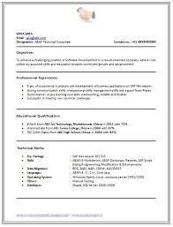 Professional Resume Format For Experienced Free Download Amusing B