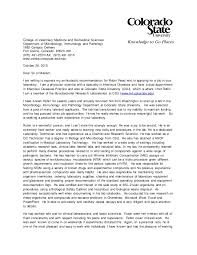 do csu need letter recommendation letter of recommendation