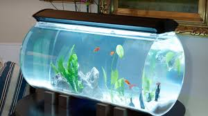 Isn't it about time the Aquarium got a design upgrade? Lets unite beautiful