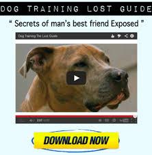 Dog Training Hand Signals Chart And Pdf Receptivewhiz3