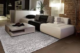area rug 6
