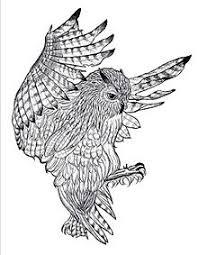 鳥 フクロウの画像76点完全無料画像検索のプリ画像bygmo