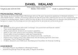 Resume Profile Samples Samples For Resumes Resume Profile Samples