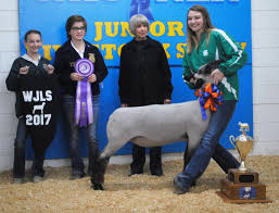 Projects showcased at Wagoner Junior Livestock Show | News ...