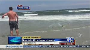 Swimmers Catch Small Shark In Sea Isle City 6abc Com